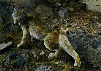 In Northern Hunting Grounds- Signed By The Artist – PaperLithograph – Limited Edition – 76A/P – 21 1/4x30