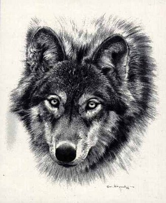 Den Mother – Pencil Sketch- Signed By The Artist – PaperLithograph – Limited Edition – 2500S/N – 16x13 1/8