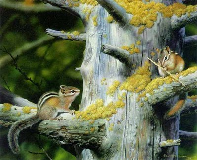 Playful Pair – Chipmunks- Signed By The Artist – PaperLithograph – Limited Edition – 20P/P – 13 1/2x16 3/4