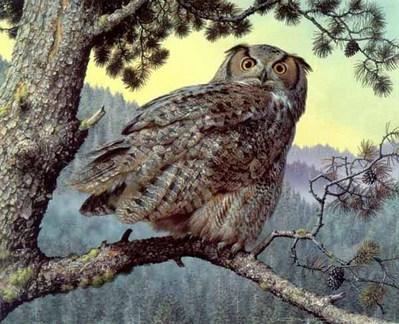 Silent Hunter – Great-Horned Owl- Signed By The Artist								 – Paper Lithograph – Limited Edition – 950 S/N – 16 x 20