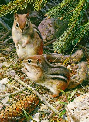 Under The Pine Trees – Chipmunks- Signed By The Artist – PaperLithograph – Limited Edition – 950S/N – 10 5/8x7 1/4