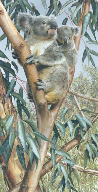 Up A Gum With Mum- Signed By The Artist								 – Canvas Giclee – Limited Edition – 18 A/P – 38 x 20