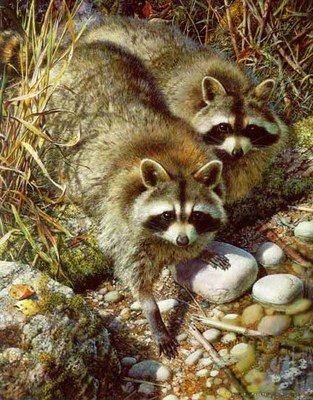 Waterside Encounter- Signed By The Artist – PaperLithograph – Limited Edition – 950S/N – 22 3/4x17 1/2