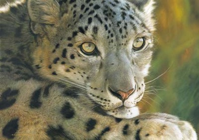 West Of The Moon – Snow Leopard- Signed By The Artist – CanvasLithograph – Limited Edition – 350S/N – 21x30