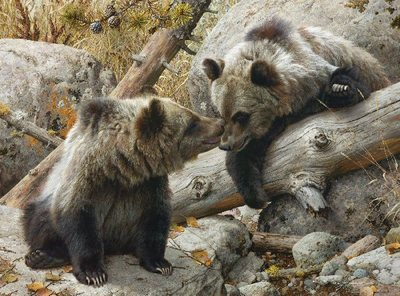 Alaska Chat- Signed By The Artist								 – Canvas Giclee – Limited Edition – 180 S/N – 25 x 33