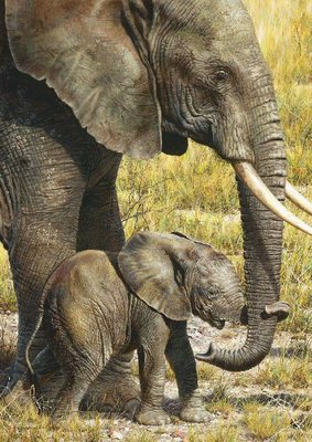 Baby Mine- Signed By The Artist								 – Canvas Giclee – Limited Edition – 40 A/P – 22 x 16