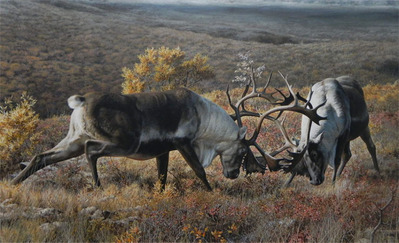 Tundra Challengers- Signed By The Artist								 – Canvas Giclee – Limited Edition – 180 S/N – 26 x 45