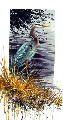 Royal Status – Great Blue Heron- Signed By The Artist – PaperLithograph  – Limited Edition  – 450S/N  –  25x15