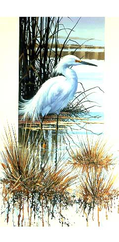 Snowy Egret- Signed By The Artist – PaperLithograph  – Limited Edition  – 76A/P  –  16 5/8x10