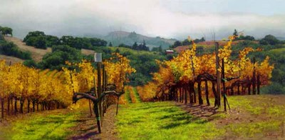 Fall Vineyard- Signed By The Artist								 – Canvas Giclee – Limited Edition – 100 S/N – 19 x 38 –