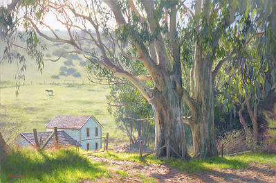 Basking Eucalyptus- Signed By The Artist – CanvasGiclee  – Limited Edition  – 50S/N  –  24x36