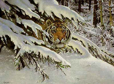 Siberian Ambush- Signed By The Artist – PaperLithograph  – Limited Edition  – 950S/N  –  21 5/8x29