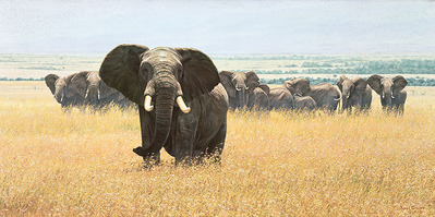 Confrontation- CanvasGiclee – Limited Edition – 35S/N – 18x36