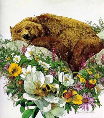 Bugged Bear- Signed By The Artist								 – Paper Lithograph – Limited Edition – 1000 S/N – 19 1/2 x 19 1/2