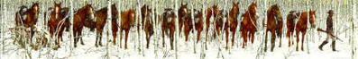 Two Indian Horses- Signed By The Artist – PaperLithograph – Limited Edition – 12253S/N – 7 1/2x47
