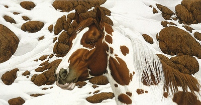 Hide And Seek – A-2- PaperLithograph – Limited Edition – 25000Limited – 5 1/4x10 1/4