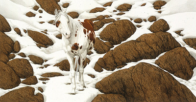 Hide And Seek – B-3- PaperLithograph – Limited Edition – 25000Limited – 5 1/4x10 1/4