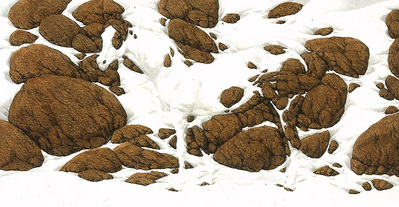 Hide And Seek – B-6- Signed By The Artist – PaperLithograph – Limited Edition – 25000S/N – 5 1/4x10 1/4