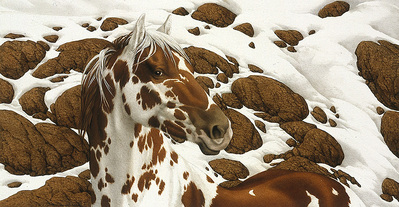 Hide And Seek – C-1- PaperLithograph – Limited Edition – 25000Limited – 5 1/4x10 1/4