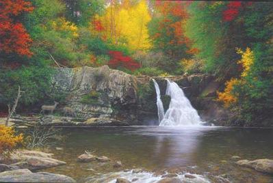 Autumn In The Smokies- Signed By The Artist								 – Paper Lithograph – Limited Edition – 350 S/N – 20 x 30