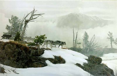 Along The Ridge- Signed By The Artist								 – Paper Lithograph – Limited Edition – 950 S/N – 21 1/2 x 32 1/2