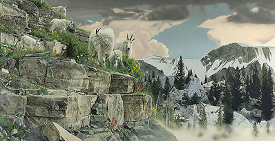 On The Rocks- Signed By The Artist – CanvasGiclee – Limited Edition – 100S/N – 21x40