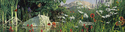 Summer Salad- Signed By The Artist – CanvasGiclee – Limited Edition – 75S/N – 11x42