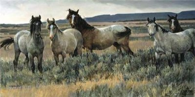 Amazing Grays II- Signed By The Artist – CanvasLithograph  – Limited Edition  – 195S/N  –  18x36  –