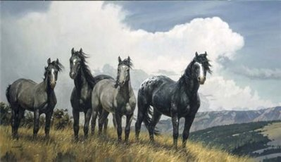 Amazing Grays IV- Signed By The Artist – CanvasLithograph  – Limited Edition  – 295S/N  –  20x35