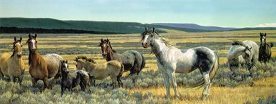 Amazing Grays V- Signed By The Artist – CanvasLithograph  – Limited Edition  – 495S/N  –  13 1/2x35
