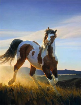 Audacious- Signed By The Artist – CanvasGiclee  – Limited Edition  – 95S/N  –  55x42  –