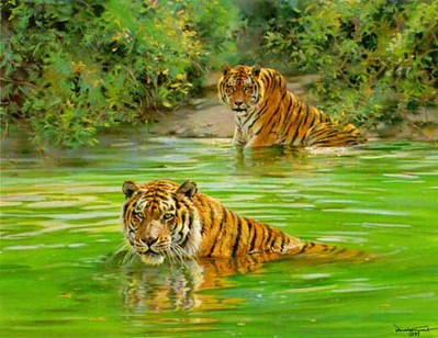 Cool Cats – Tigers- Signed By The Artist – PaperLithograph – Limited Edition – S/N – 19 1/2x25 3/4