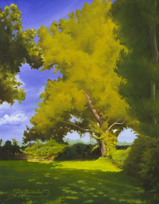 Sycamore- Signed By The Artist – CanvasGiclee – Limited Edition – 75S/N – 10x8