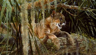 Creature Comforts- Signed By The Artist – PaperLithograph  – Limited Edition  – 450S/N  –  19x32 1/2