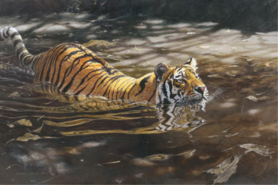 Jungle Crossing- Signed By The Artist – PaperLithograph – Limited Edition – 650S/N – 21 1/4x32 1/2