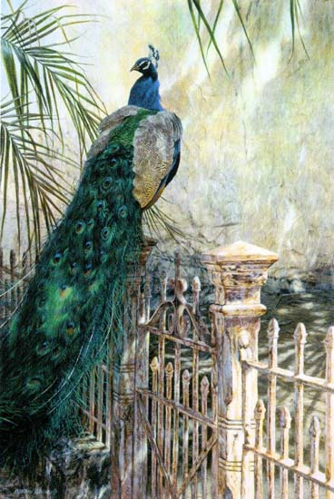 Old Colonial- Signed By The Artist – CanvasGiclee  – Limited Edition  – 95S/N  –  36x24