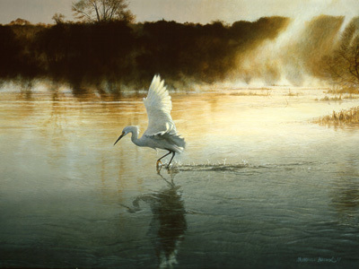 Breaking The Silence – Egret- Signed By The Artist – PaperLithograph – Limited Edition – 39A/P – 16x21 1/2