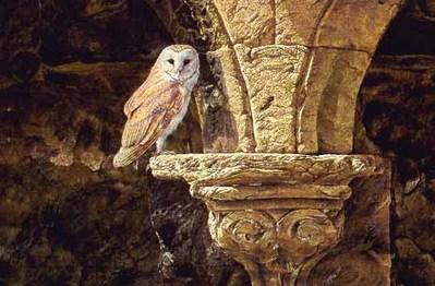 Ancient Glow – European Barn Owl- Signed By The Artist								 – Paper Lithograph – Limited Edition – 950 S/N – 19 3/8 x 29 1/8