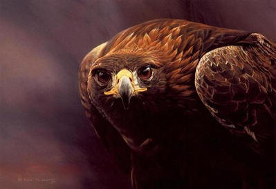 Magnificent – Golden Eagle- Signed By The Artist – PaperLithograph – Limited Edition – 950S/N – 14 3/4x20