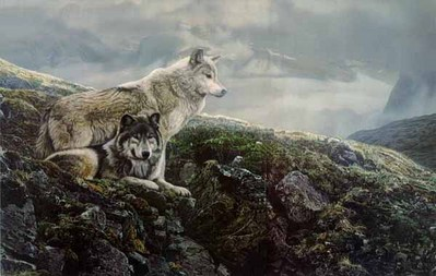 Above The Timberline- Signed By The Artist – PaperLithograph  – Limited Edition  – 1250S/N  –  19 5/8x29 3/8