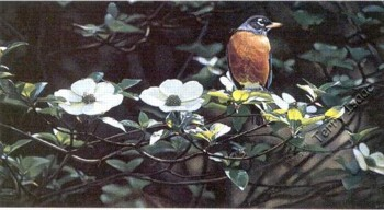 Backyard Robin- Signed By The Artist – PaperLithograph  – Limited Edition  – 2500S/N  –  11 7/8x22 3/4