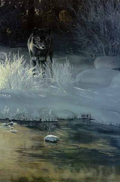 Black Magic- Signed By The Artist – CanvasGiclee  – Limited Edition  – 180S/N  –  36x24