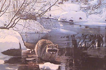 Cool Pause- Signed By The Artist – PaperLithograph – Limited Edition – 1500S/N – 15x22 1/2