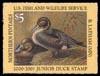 JDS 8 – 2000 Pintail Bonnie Latham