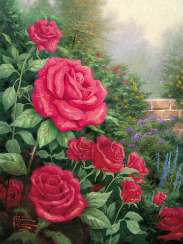 A Perfect Red Rose (16 X 12 Canvas)- Signed By The Artist								 – Canvas Lithograph – Limited Edition – 2950 S/N – 16 x 12 –