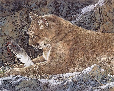 Paws And Reflect- Signed By The Artist – PaperLithograph – Limited Edition – 3250S/N – 16x20