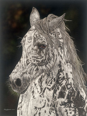 American Horse- Signed By The Artist								 – Canvas Giclee – Limited Edition – 100 S/N – 24 x 18