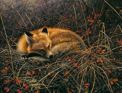 Fox Dreams- Signed By Andrea Lyman – CanvasGiclee – Limited Edition – 15A/P – 9x12 –