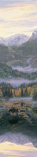 Northern Reflections- Signed By Andrea Lyman – CanvasGiclee – Limited Edition – A/P – 38x9 –