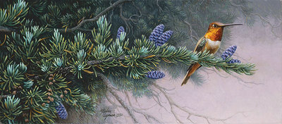 Rufous Hummingbird And Mountain Hemlock- Signed By Andrea Lyman – CanvasGiclee – Limited Edition – 100S/N – 5 1/4x12